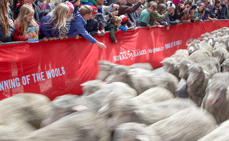 Property Brokers Running of the Wools