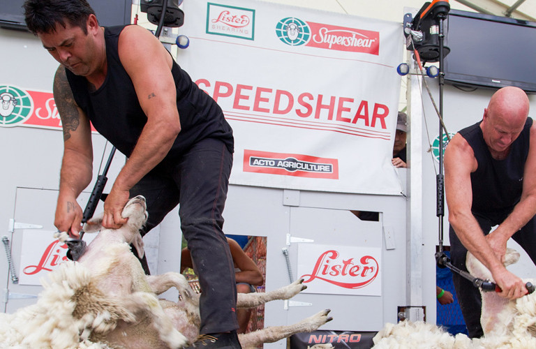 New Zealand Speed Shearing Championship