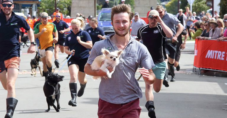 Mitre 10 Man and Mutt Race